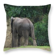 Body Language II Throw Pillow