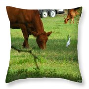 Bodyguard Throw Pillow