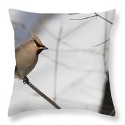 Bohemian Waxwing 2 Throw Pillow