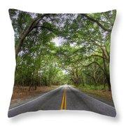 Bohicket Road Johns Island South Carolina Throw Pillow