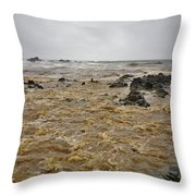 Boiling Waters Throw Pillow