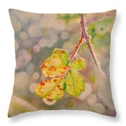 Bokeh - Sunlight On Brambles And Cobwebs Throw Pillow
