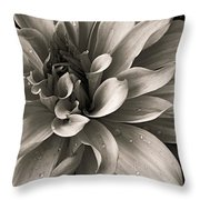 Bold Bloom Throw Pillow