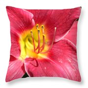 Bold Throw Pillow