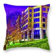 Bold Facade Throw Pillow
