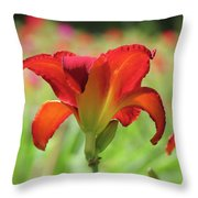 Bold Red - Daylily Throw Pillow