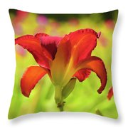 Bold Red Gold - Daylily Throw Pillow
