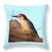 Bold Woodpecker Throw Pillow