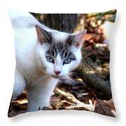 Boldly Throw Pillow