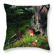 Boletus Mushroom Throw Pillow