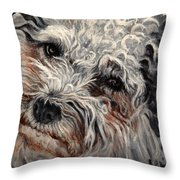 Bolognese Breed Throw Pillow