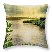 Bolsa Chica Bird Sanctuary Throw Pillow