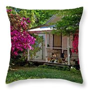 Bon Secour Pink Porch Throw Pillow