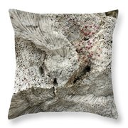 Bonaire Coral And Shells 1 Throw Pillow