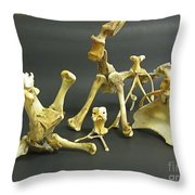 Bone Creatures One Throw Pillow