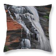 Bone Creek Falls Throw Pillow