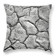 Bone Dry  Throw Pillow