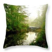 Bonneyville Mill Waterfall Throw Pillow