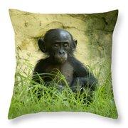 Bonobo Tyke Throw Pillow