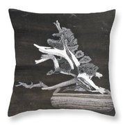 Bonsai #4 Throw Pillow by Richard Le Page
