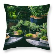 Bonsai Afloat Throw Pillow