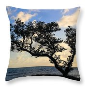 Bonsai Inspiration Throw Pillow