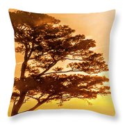 Bonsai Pine Sunrise Throw Pillow