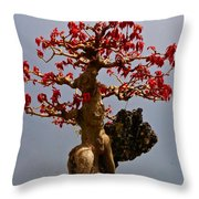 Bonsai Spring Wardrobe Throw Pillow