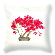 Bonsai Tree - Kurume Azalea Throw Pillow