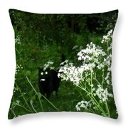 Boo Boo Throw Pillow