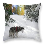 Boofies Great Adventure Throw Pillow