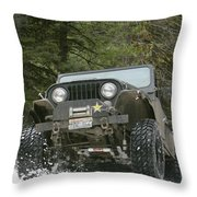 Booger On The Trail Throw Pillow