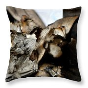 Book Burnning Throw Pillow