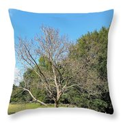 Booker T Washington Hog Pen Throw Pillow