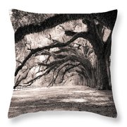 Boone Hall Plantation Live Oaks Throw Pillow