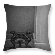 Boot Clean Throw Pillow