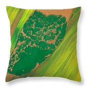 Boot Top In A See Of Grass Throw Pillow