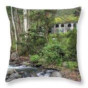 Boquete Castle Throw Pillow