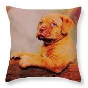 Bordeaux Mastiff Pup Throw Pillow