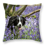 Border Collie In Bluebells Uk Throw Pillow