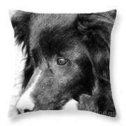 Border Collie In Pencil Throw Pillow by Smilin Eyes  Treasures