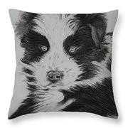 Surprised Border Collie Puppy Throw Pillow