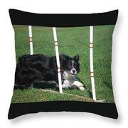 Border Collie Weaving Throw Pillow