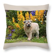 Border Guard Throw Pillow