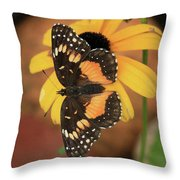 Bordered Patch Throw Pillow
