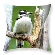 Boring Wood  Throw Pillow