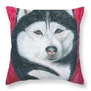 Boris The Siberian Husky Throw Pillow