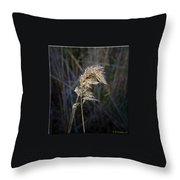 Born Wild Throw Pillow