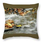 Boscobel Stream Throw Pillow