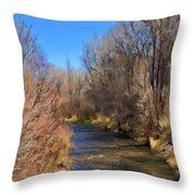 Bosque De Rio De Taos Throw Pillow
